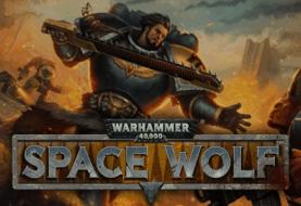 Warhammer 40k: Space Wolf
