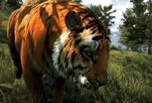 Far Cry 4 Shows off Engine's NVIDIA Gameworks Technology Enhancements